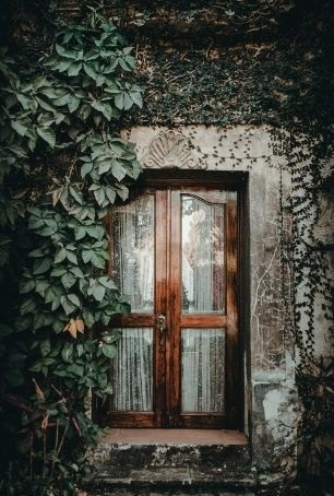 porte vitrée en bois