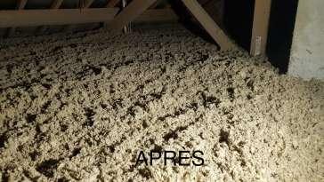 Isolation des combles - Fenêtre - Traitement des toitures Façade - Humidité - Charpente Dijon EXPERT ENVIRONNEMENT HABITAT 21 MICHELE